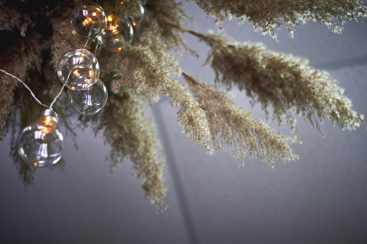 Bottom view composition of reeds and garland of light bulbs, selective focus